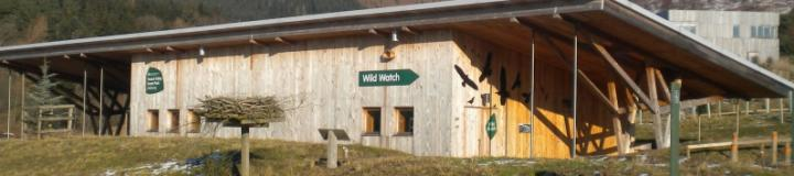 Glentress - Wild Watch Centre and Osprey Project