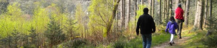Glenkinnon Burn